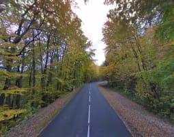 Balade dans les Vosges du Nord / Allemagne 2