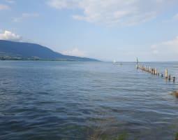 Visite des lacs Léman et Neuchâtel 4