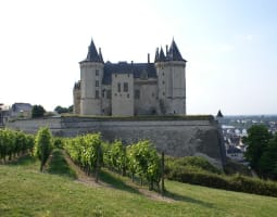 Petit tour autour de Saumur 4