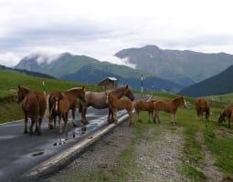 Boucle d'Ax-les Thermes passant par l'Espagne et l'Andorre 0