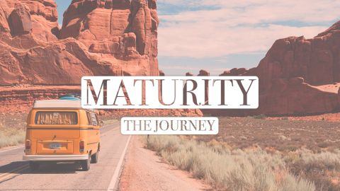 Maturity - the journey