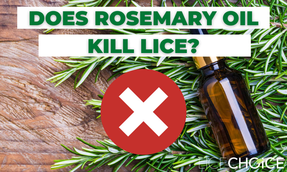 rosemary lice spray