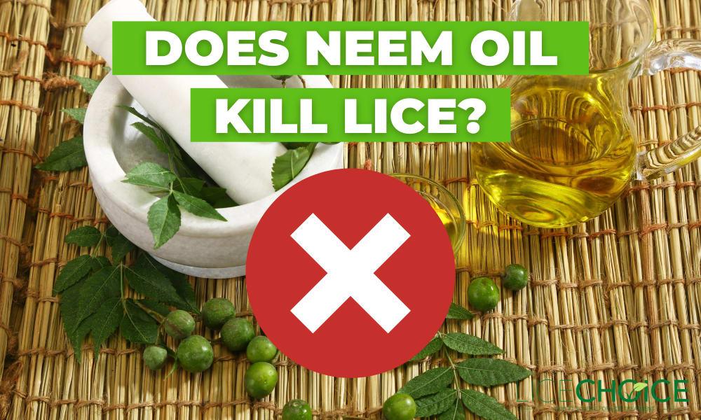 Neem oil for lice