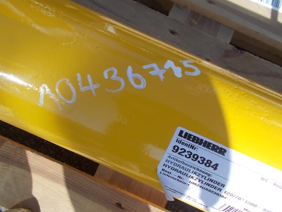 DSCN2858.JPG