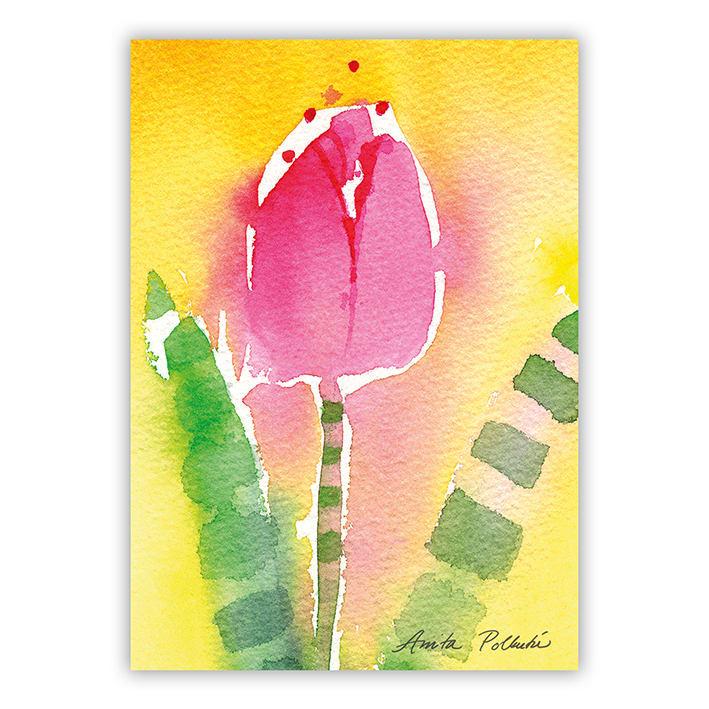kesäinen punainen tulppaani postikortti
