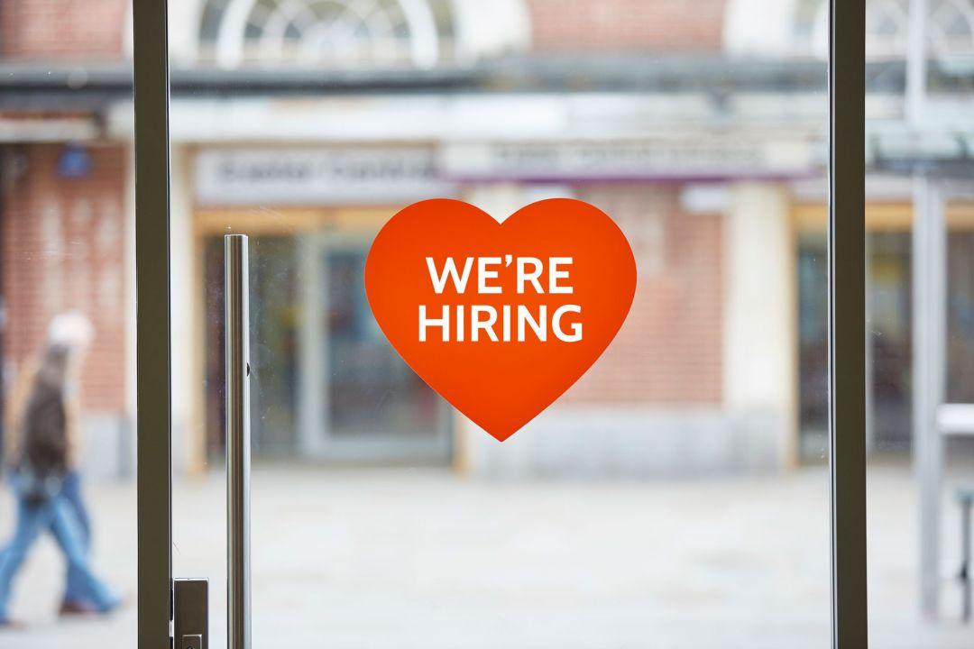 hiring.jpg#asset:504