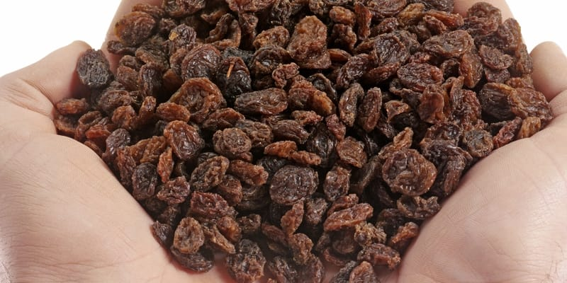 Handfull Of Raisins Mindfullness