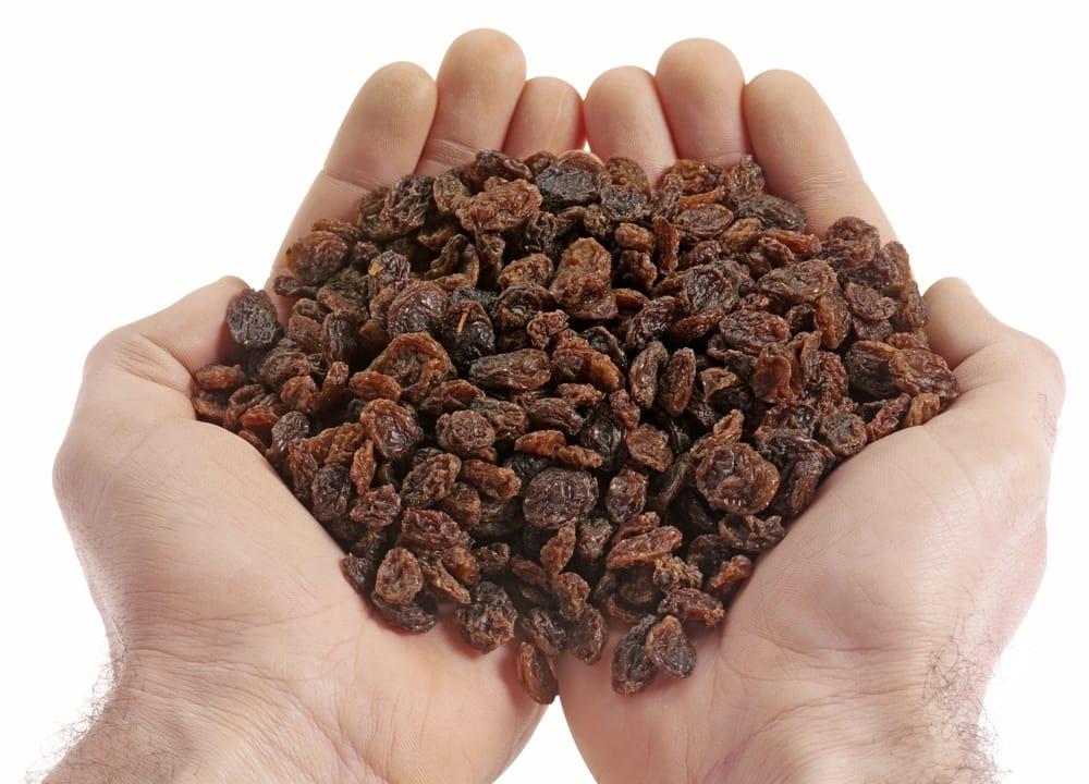 Handfull Of Raisins Mindfullness