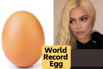अंडा जिससे हार गई दुनियाभर की हसीनायें
