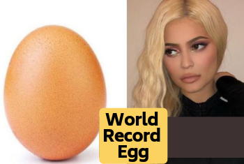 World_Record_Egg