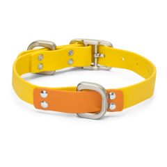 West Paw Jaunts Dog Collar Goldenrod/Tangerine