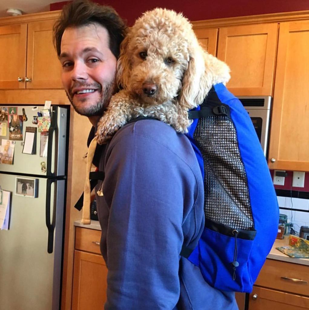 8778d47cc2d565 K9 Sport Sack AIR Dog Carrier Backpack (Large), Canada | Moonlight Dog Cafe