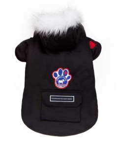 Canada Pooch - Winter Wilderness Parka