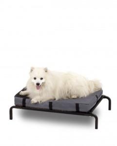 Four Seasons - 3-in-1 Combo Cot Bed w/ Double-Sided Foam Mattress