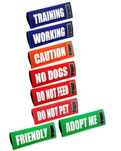 RC Canine Friendly - Bark Notes