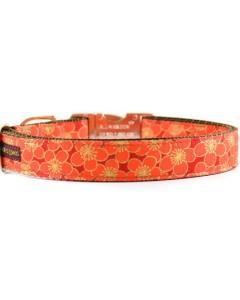 Danes & Divas - Orange & Gold Blossom Dog Collar