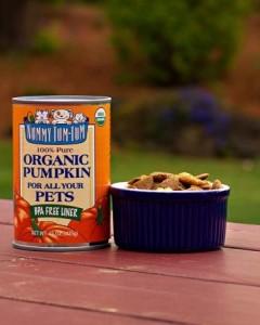 Nummy Tum-Tum - Organic Canned Pure Pumpkin 15 oz (Case of 12)
