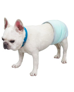 ppark - Courtesy Belly Band for Male Dogs