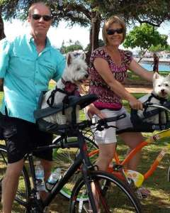 Buddyrider Bicycle Pet Seat
