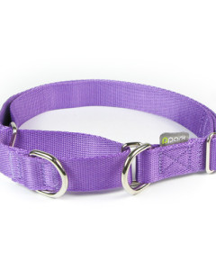 ppark - i-Series 2-Way Martingale Collar
