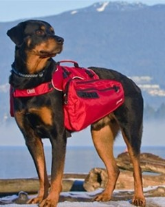 Canine Equipment - Ultimate Trail Pack