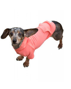 Eco-Pup - Apple Hoodie for Dogs