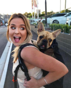K9 Sport Sack AIR - Dog Carrier Backpack (Medium)