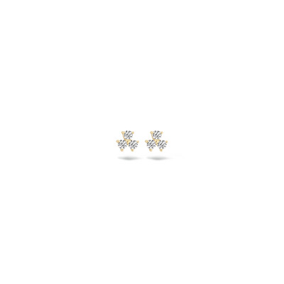 Blush - oorringen 14kt geel goud met zirkonium - 7197YZI