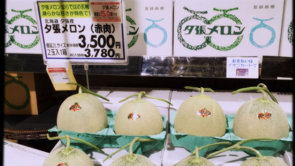 北海道夏天的名物 蜜瓜