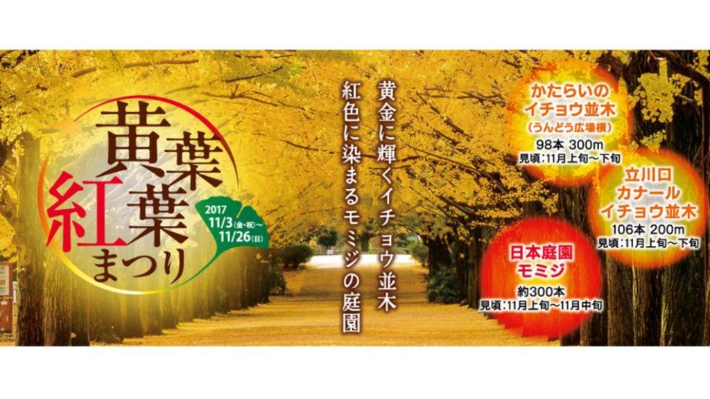 【真·期間限定】從東京輕鬆出發!五個易去又有名的必去紅葉景點(附交通貼士)