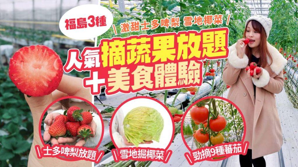 激甜士多啤梨 雪地椰菜 福島3種人氣摘蔬果放題+美食體驗