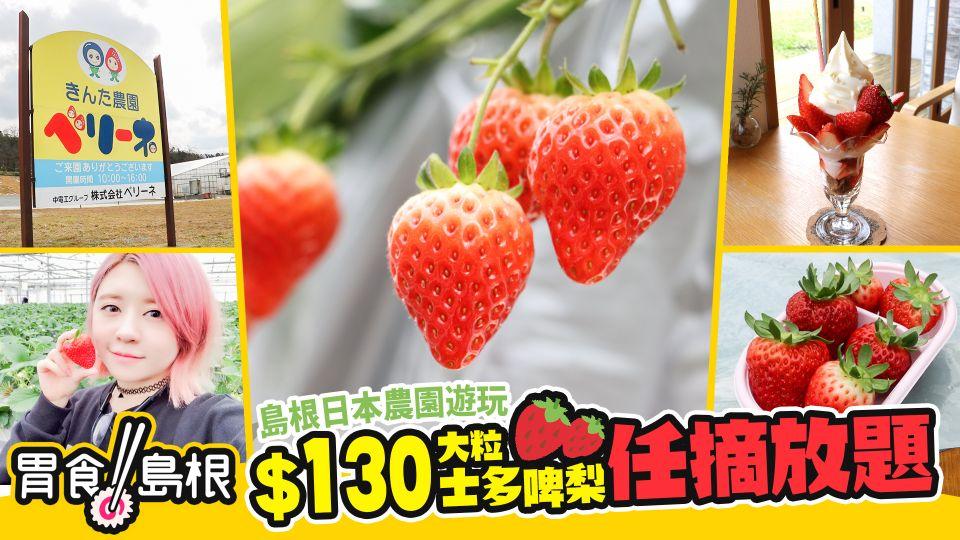 《胃食島根》:島根日本農園遊玩 $130大粒士多啤梨任摘放題