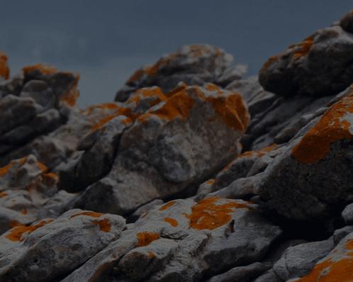 UX and UI service showcase block background image