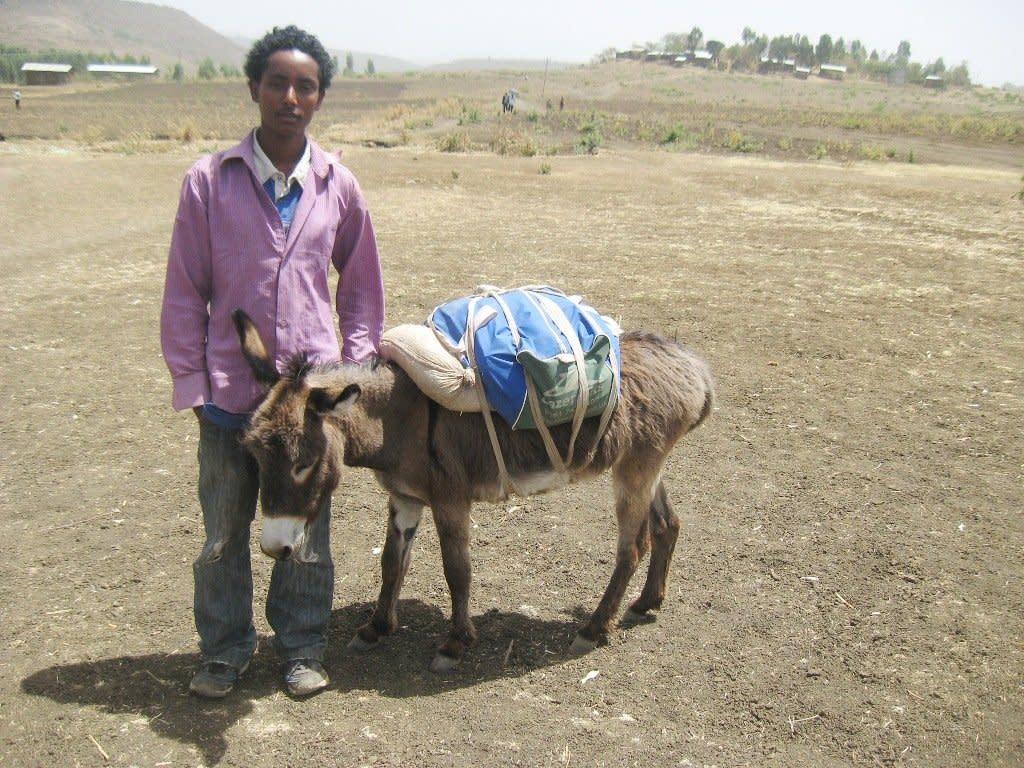Donkey-Library-at-Dembiya-Woreda-3-resized_svdcty.jpg