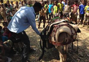 ETHIOPIA! 039