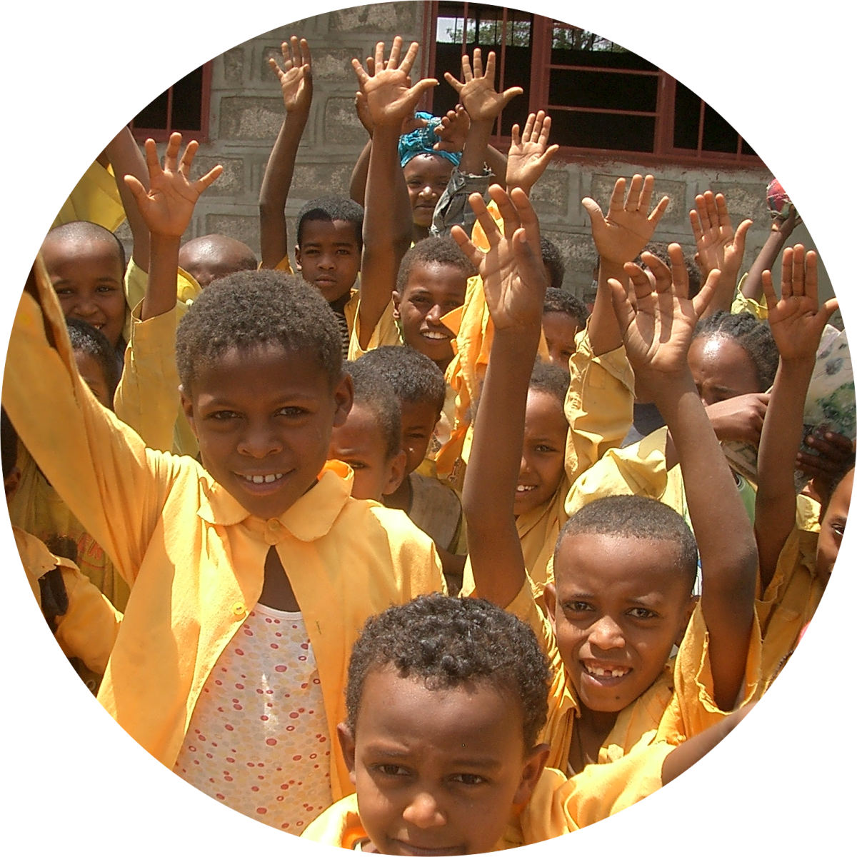 About us - Link Ethiopia