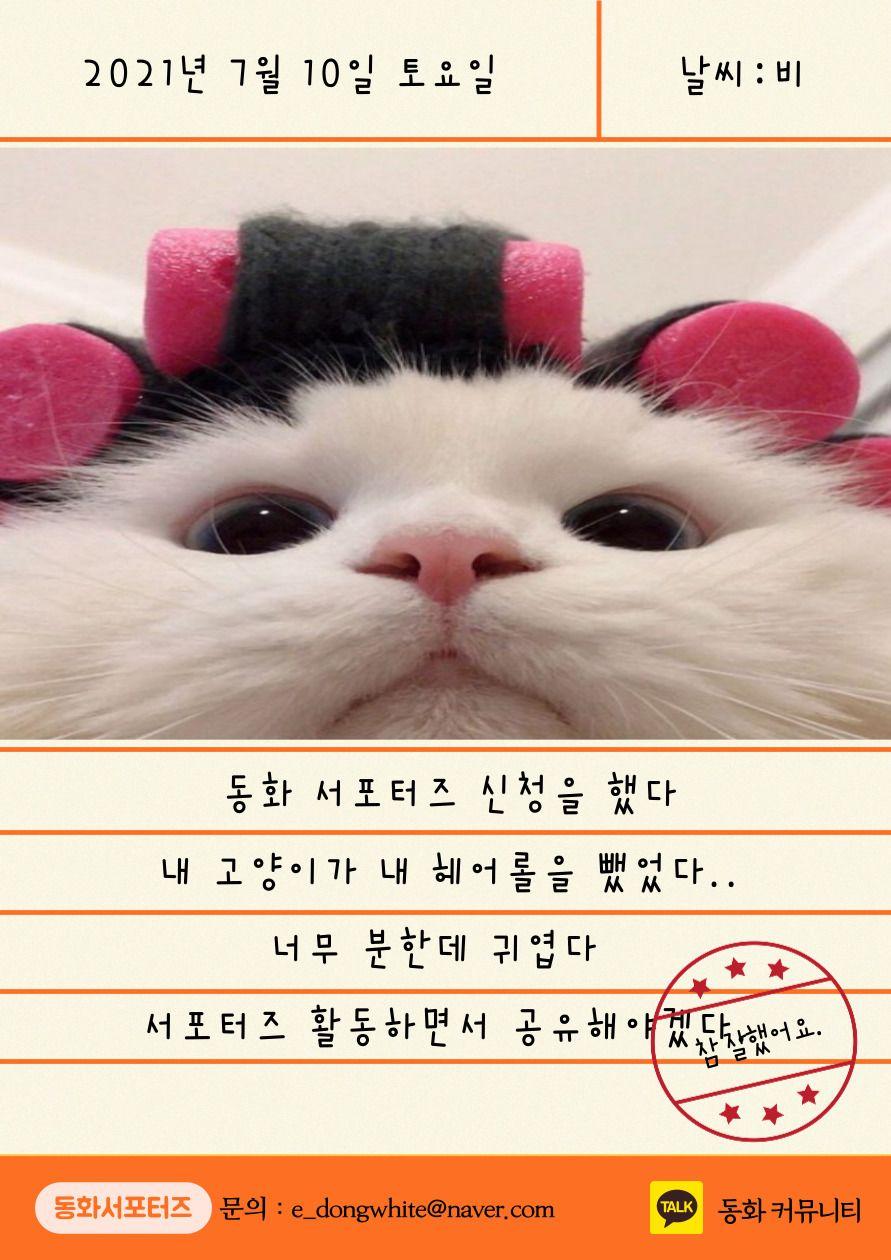 동화커뮤니티 일기쓰며 활동하는 동화서포터즈 8기