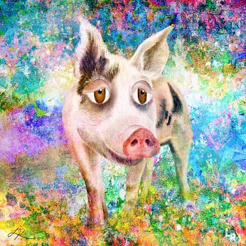 Jeremiah - Digital Painting of Pig