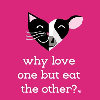 Why Love One but Eat the Other? - Digital Illustration Animation