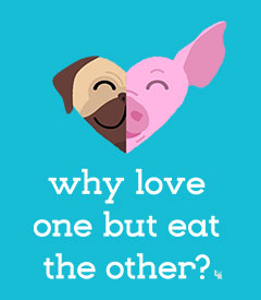 Why Love One but Eat the Other - Pug and Pig