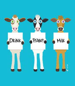 Drink Plant Milk