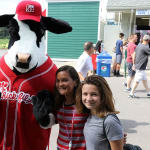 chick fil la cow and fans