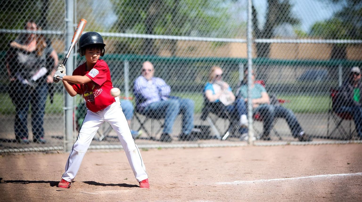 Common Little League Rule Misconceptions What Parents Need To Know
