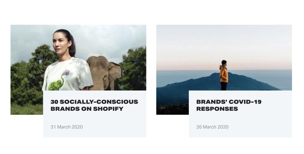 we make websites blog