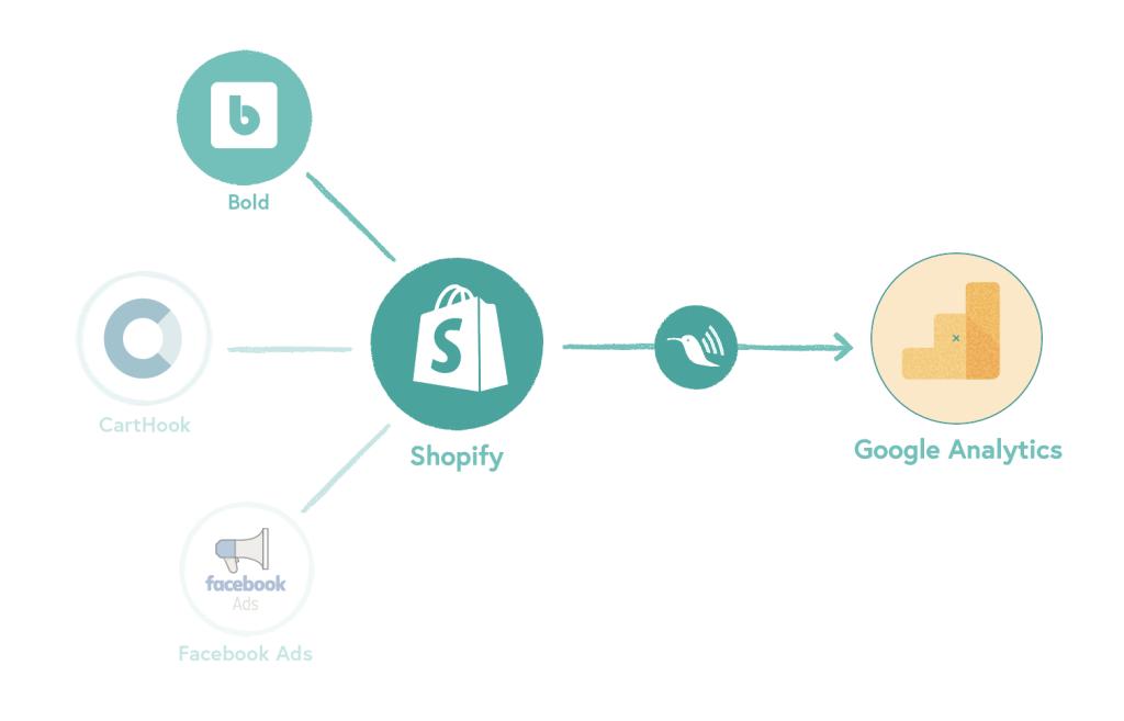 bold subscriptions google analytics