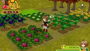 harvest moon light of hope special edition ps4 walkthrough