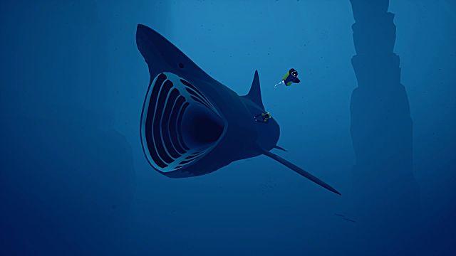 basking-shark-27de0.jpg