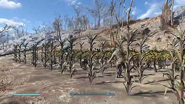farm-c805c.jpg