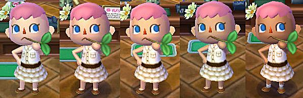 Image from Animal Crossing Wiki