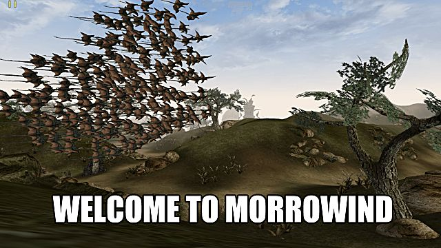 Morrowind Cliff Racers Flock